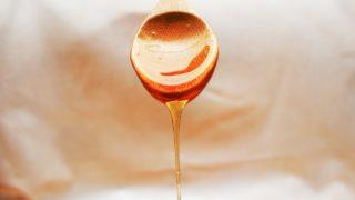 ヤマトのり蜂蜜どこで買える?